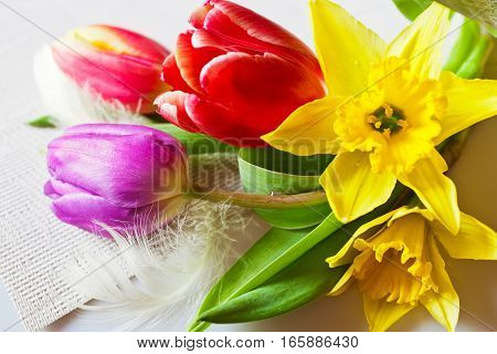 Traditional Czech easter decoration - daffodils and colorful tulips with feather. Spring easter holiday arrangement.