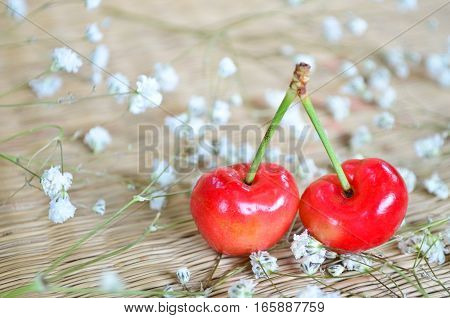 Red cherries with small white flowers on the mat background