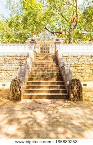 Anuradhapura Jaya Sri Maha Bodhi Tree West Stairs