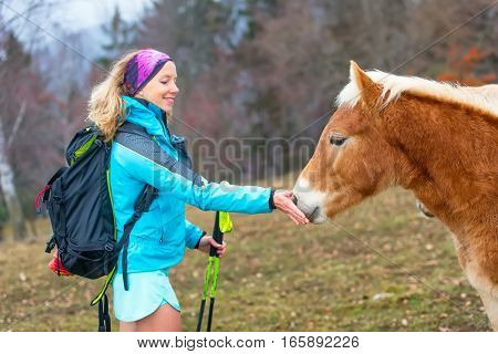 Sporty girl in nature gives grass to eat a horse