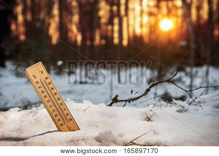 thermometer with low temperature in the snowy woods at sunset