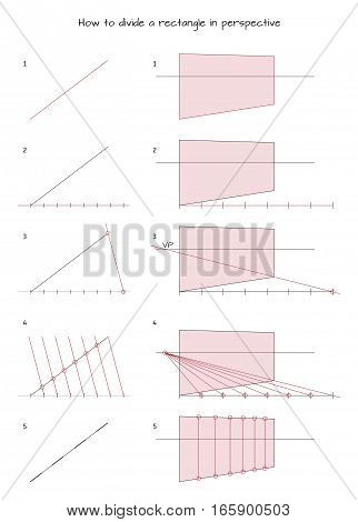 Infographic for designers How to divide a rectangle in perspective isolated on white