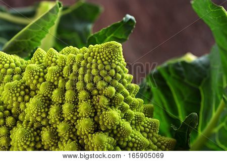 Romanesco broccoli or Roman cauliflower with leaves close up shot details of the healthy vegetable Brassica oleracea a variation of cauliflower bred near Rome