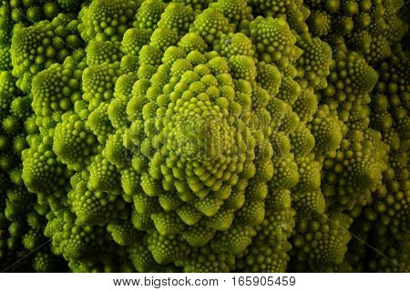Romanesco broccoli or Roman cauliflower close up shot from above texture detail of the healthy vegetable Brassica oleracea a variation of cauliflower bred near Rome
