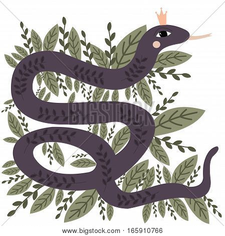 Elegant and beautiful Queen- snake. Vector illustration.