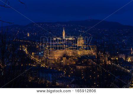 Buda Castle Hungary Budapest at night panorama