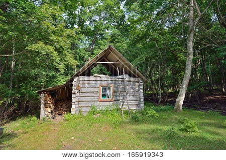 The small log cabin in forest. Russian Far-East.