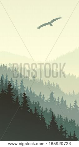 Vertical illustration of misty coniferous forest hills with eagle.