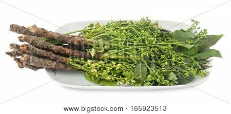 Thai Cuisine and Food Close Up of Margosa or Neem Leaves and Blossom Isolated on White Background. poster