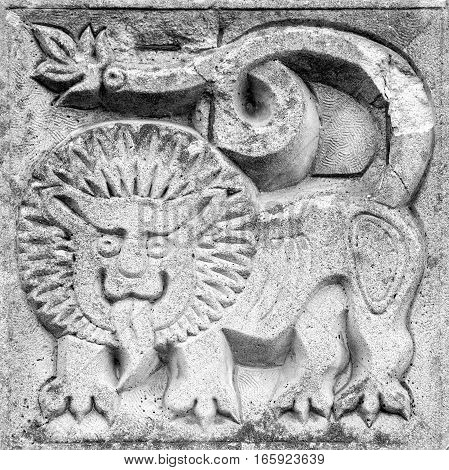 fabulous lion stone bas-relief on the wall