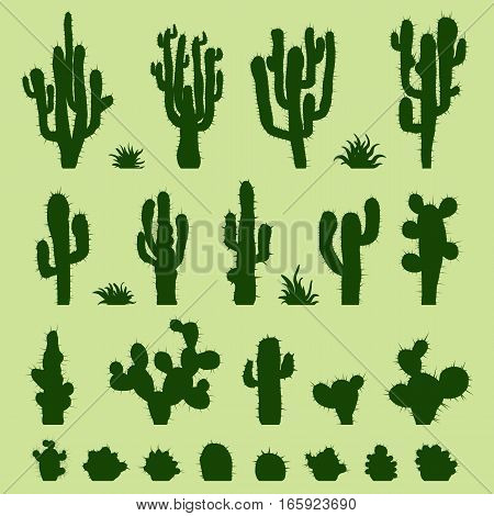Set of different types of green cactus plants. Vector illustration.