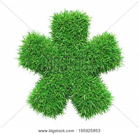 Green grass star, isolated on white background. 3D illustration