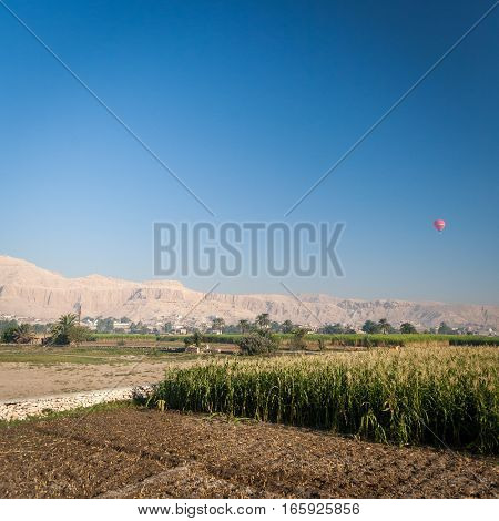 The Nile floodplain near Luxor Egypt with a hot air balloon flying over the Valley of the Kings in the distance.