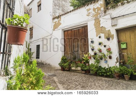 Ronda (Andalucia Spain): old typical street with white houses plants and flowers