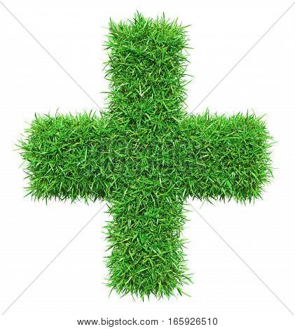 Green grass plus, isolated on white background. 3D illustration