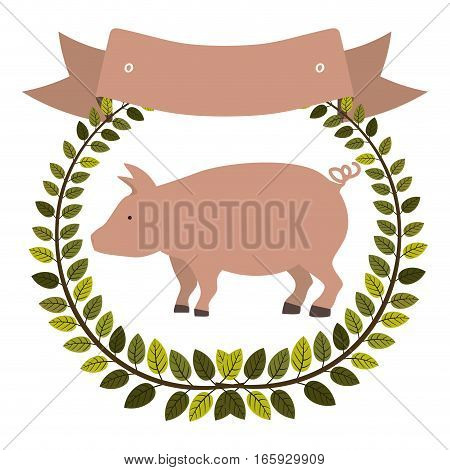 colorful olive crown and ribbon with pink pig vector illustration