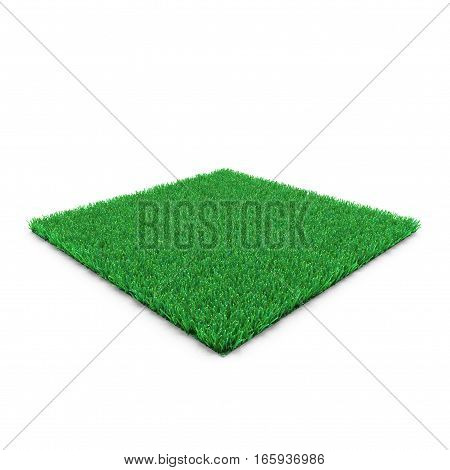 Square of Kentucky Bluegrass Grass field over white background. 3D illustration