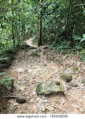 nature walkway in Khao Chamao , Rayong , Thailand