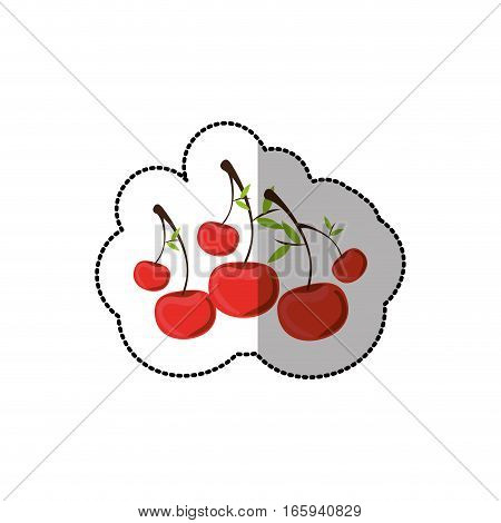 middle shadow sticker colorful with cherrys vector illustration