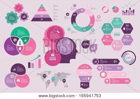 Infographic design set collection purple pink tosca Eps vector illustration