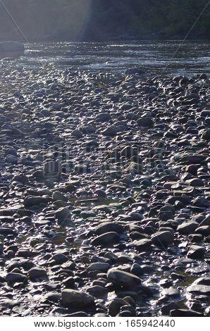 Early Morning sunlight on rocky stream shoreline