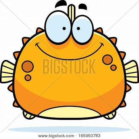 Smiling Little Blowfish