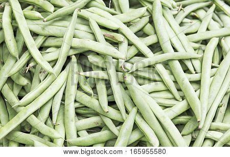 Common green Beans background close up picture