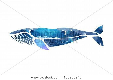 Blue whale. Balaenoptera musculus. Whale isolated on a light background. Logo for your design. Watercolor. Hand drawn.