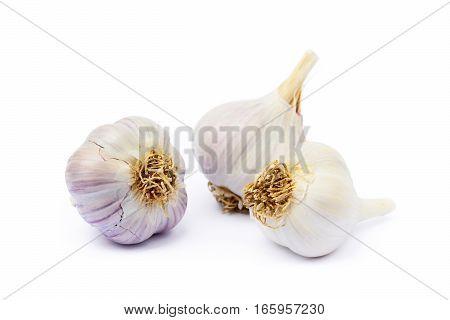 Healthy fresh garlic isolated on white background