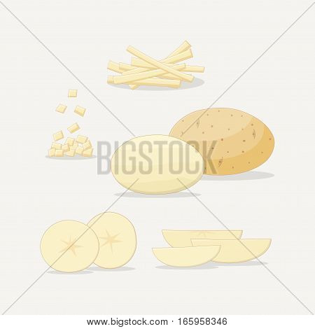Sliced potato. Flat style illustration. Slices and realistic texture. Healthy and organic food concept.