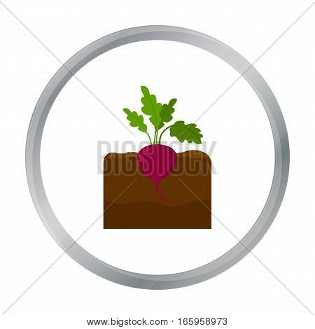 Beet icon cartoon. Single plant icon from the big farm, garden, agriculture cartoon. - stock vector