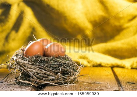 Uncooked eggs in natural birds nest over yellow burlap curtain