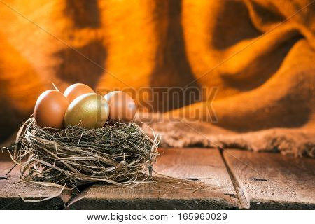 Golden egg in a nest between simple chicken eggs