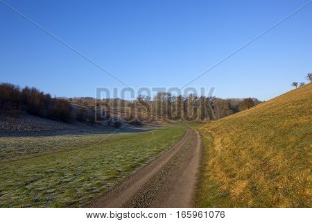 a country track in a valley with pheasant feeders trees and hedgerows in a yorkshire wolds hunting landscape under a clear blue sky in winter