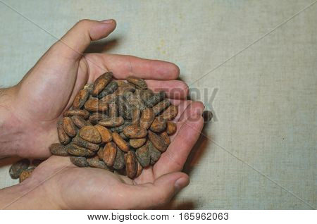 Man's hands holding handful of cacao beans on flax linen background faded colors Top view