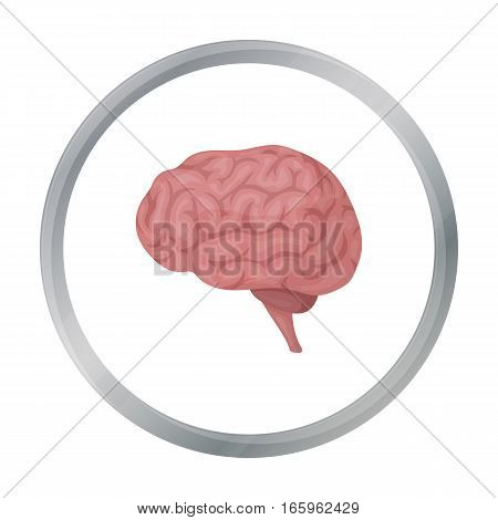 Brain icon in cartoon style isolated on white background. Organs symbol vector illustration.