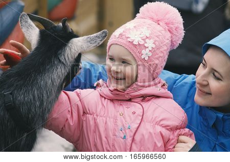 The girl in the presence of mother smiles happy with communication with a little goat