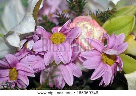 Flower arrangement beautiful pink chrysanthemums and daisies