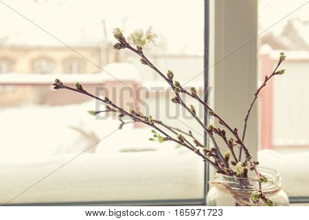 Branch of cherry tree in glass jar on the window sill. In the background a beautiful winter landscape in snow. Cozy home concept.