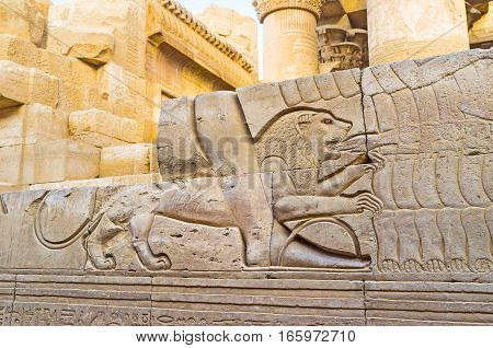 The Running Lion In Kom Ombo Temple