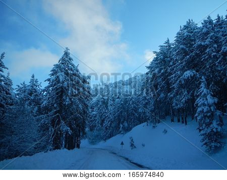 Snowy Troodos Mountains In Cyprus