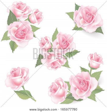 Roses-pattern-1