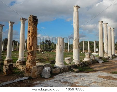 Ancient Greek Archeological Site Salamis