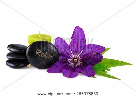 Purple Flower with Spa Stone on White