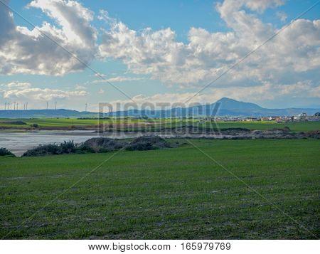 Larnaka Salt Lake With Migrating Flamingos