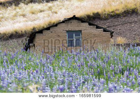 a small indigenous clay home in Ecuador