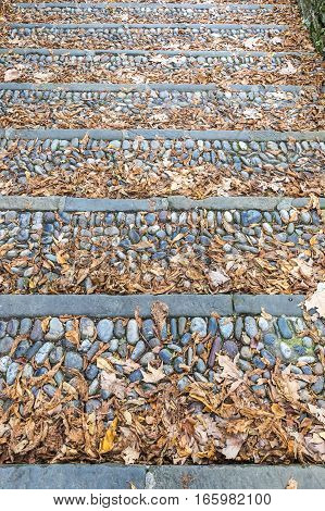 Vintage Stone Steps Covered With Fallen Leaves