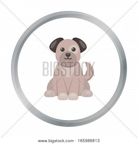 Dog cartoon icon. Illustration for web and mobile.