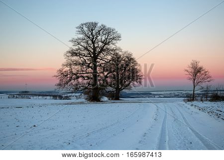 Winter landscape with fields and meadows  / Sunset in the winter