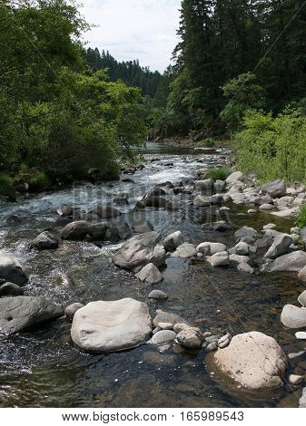 Rock Creek near the spot where it empties into the North Umpqua River at Swiftwater Recreation Site in Douglas County in Western Oregon on a summer day.